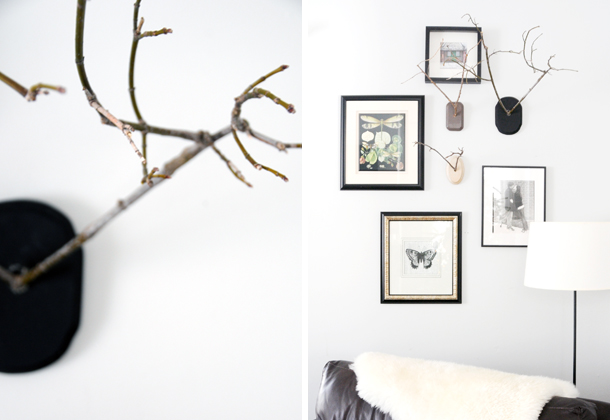 Mounted Twig Antlers on www.houseofearnest.com